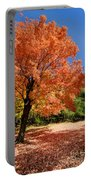 A Blanket Of Fall Colors Portable Battery Charger