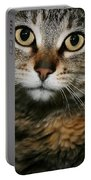 Brown Tabby Portable Battery Charger