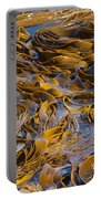 Bull Kelp Blades On Surface Background Texture Portable Battery Charger