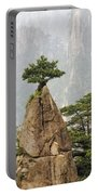 Chinese White Pine On Mt. Huangshan Portable Battery Charger