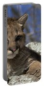 Cougar Cub Portable Battery Charger