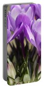 Crocus Portable Battery Charger