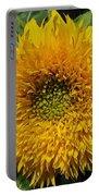 Dwarf Sunflower Named Teddy Bear Portable Battery Charger