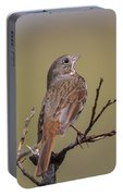 Fox Sparrow Portable Battery Charger