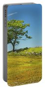 Lone Tree With Blue Sky In Blueberry Field Maine Portable Battery Charger