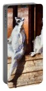 Ring Tailed Lemurs Portable Battery Charger