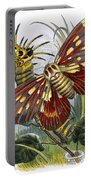The Butterfly Vivarium Portable Battery Charger