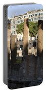 The Sacred Area Of Largo Argentina Portable Battery Charger