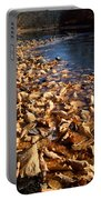 Ussurian Taiga Autumn Portable Battery Charger by Anonymous