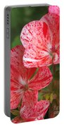 Zonal Geranium Named Mosaic Red Portable Battery Charger