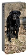 Black Labrador Retriever Portable Battery Charger by Linda Freshwaters Arndt