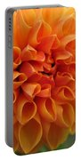 Dahlia From The Showpiece Mix Portable Battery Charger