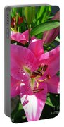 Dwarf Oriental Lily Named Farolito Portable Battery Charger