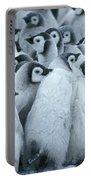 Emperor Penguin Aptenodytes Forsteri Portable Battery Charger