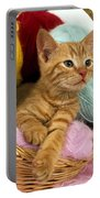 Europeen Roux Tabby Portable Battery Charger