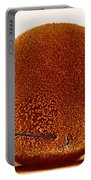 Fertilization Portable Battery Charger