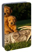 Golden Retriever Puppies Portable Battery Charger
