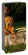 Golden Retriever Puppies Portable Battery Charger