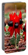 Sturt's Desert Pea Outback South Australia Portable Battery Charger