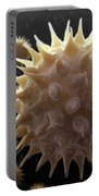Sunflower Pollen Portable Battery Charger
