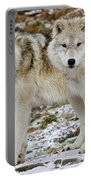 Arctic Wolves Portable Battery Charger
