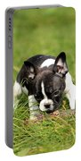 French Bulldoggs Portable Battery Charger