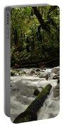 Jungle Stream Portable Battery Charger