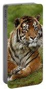 Tigre De Sumatra Panthera Tigris Portable Battery Charger