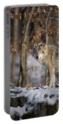 Timber Wolf Pictures Portable Battery Charger by Wolves Only