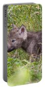 Timber Wolf Pup Portable Battery Charger