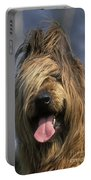 Briard Dog Portable Battery Charger