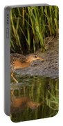 Clapper Rail Portable Battery Charger