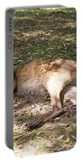 Kangaroos Portable Battery Charger