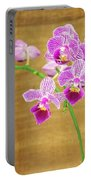 Purple Orchid-12 Portable Battery Charger