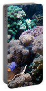 Underwater Life Portable Battery Charger