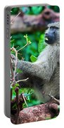 A Baboon In African Bush Portable Battery Charger