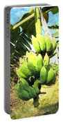 A Banana Field In Late Afternoon Sunlight With Sky And Clouds Portable Battery Charger