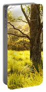 A Bare Tree Portable Battery Charger