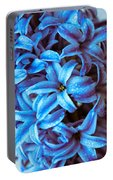 A Beauty In Blue Portable Battery Charger