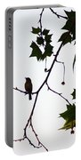 A Brown Thrasher Sings In Sycamore Tree Portable Battery Charger