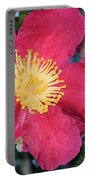 A Christmas Blossom Portable Battery Charger