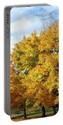 A Chromatic Fall Day Portable Battery Charger