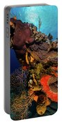 A Colorful Reef Scene With Sunburst Portable Battery Charger