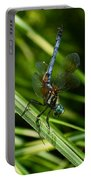 A Dragonfly Portable Battery Charger