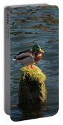 A Drake Mallard Perches On A Piling Portable Battery Charger