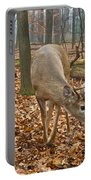 A Eight Point Buck 1261 Portable Battery Charger
