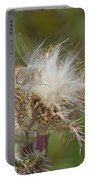 A Feather's Weight In Gold Portable Battery Charger