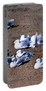 A Flock Of Seagulls Portable Battery Charger