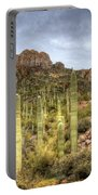A Forest Of Saguaros  Portable Battery Charger
