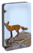 A Fox On The Rocks Portable Battery Charger